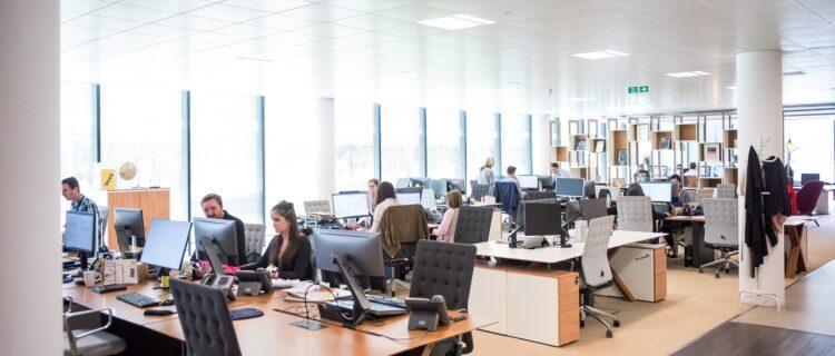 転職サイト 企業のサポート体制